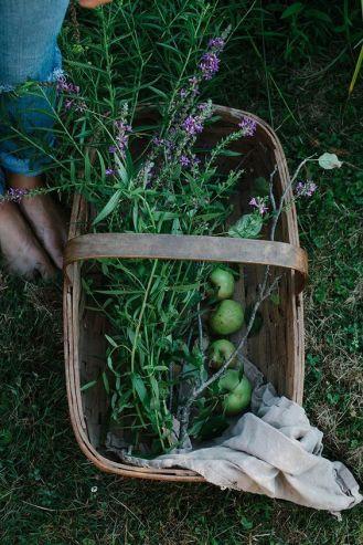 panier de fleurs et fruits
